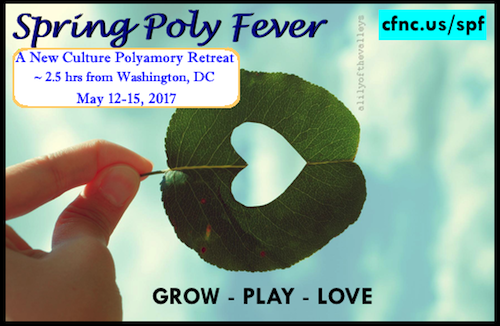 Spring Poly Fever 2017 Banner