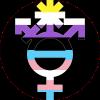 Gender & Beyond